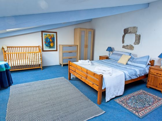 Vente maison 18 pièces 518 m2