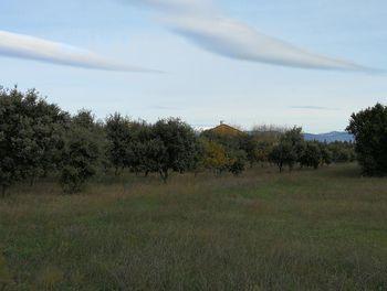 terrain à La Baume-de-Transit (26)