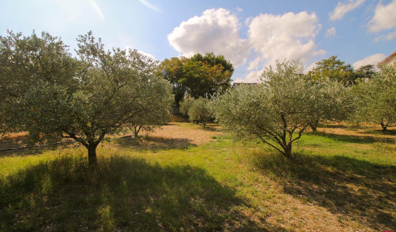 Terrain Saint-Rémy-de-Provence