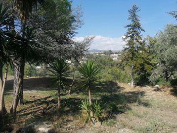terrain à Colomars (06)
