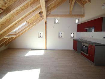 appartement à Mittelhausbergen (67)