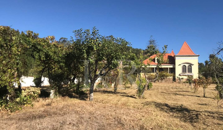 Farm house Sintra
