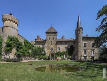 Château 20 pièces 875 m2
