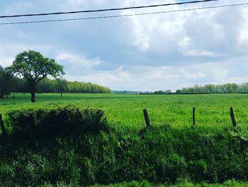 terrain à Marolles-sous-Lignières (10)