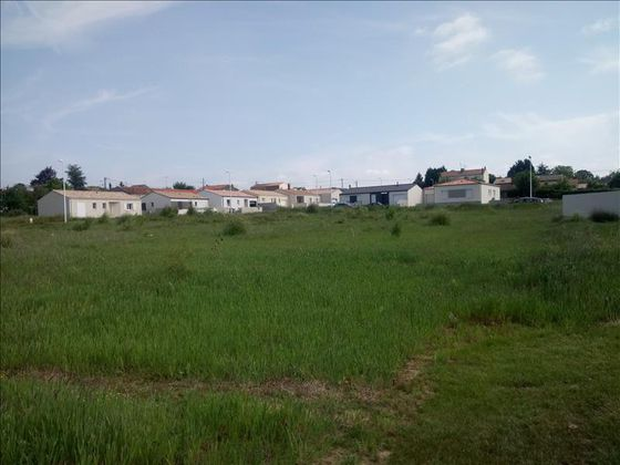 Vente terrain 17800 m2
