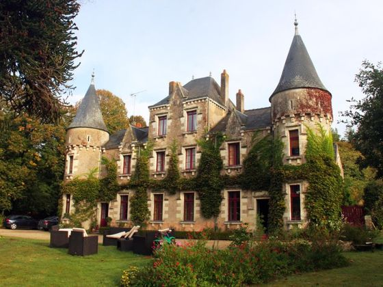 Vente château 20 pièces 450 m2