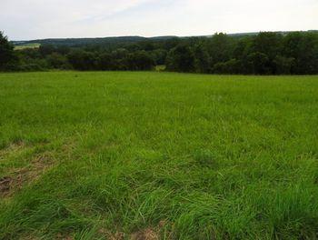 terrain à Montigny-sur-Vesle (51)