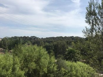 terrain à Ollioules (83)