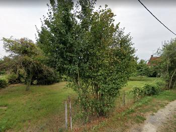 terrain à Thauvenay (18)
