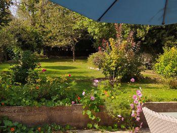 maison à Précy-sur-Oise (60)