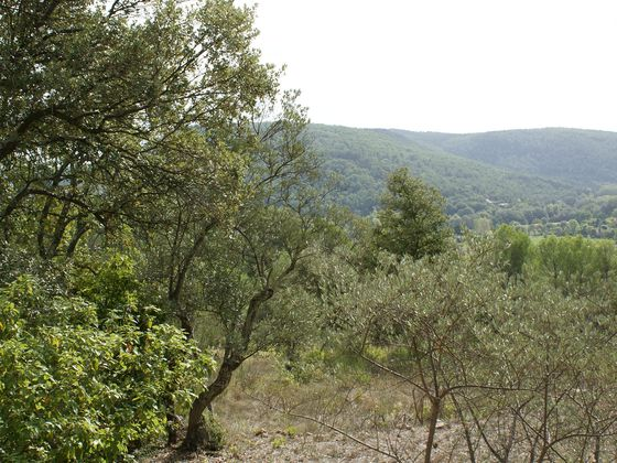 Vente terrain 1750 m2
