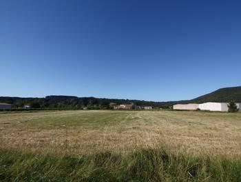 Terrain 805 m2
