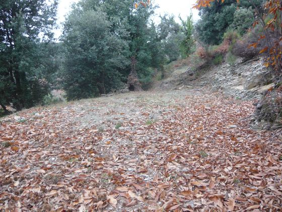 Vente terrain 5170 m2