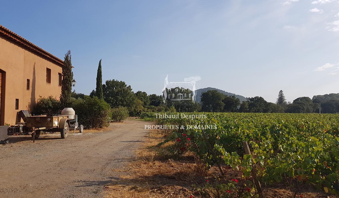 Propriété viticole avec piscine et dépendances Hyeres