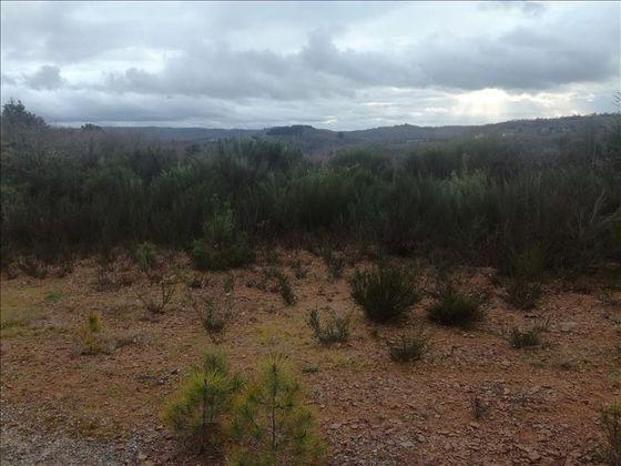 Vente terrain 14560 m2