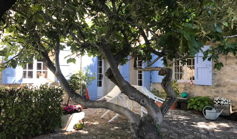 Maison avec jardin Forcalquier