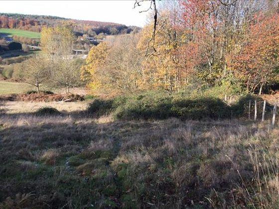 Vente terrain 25035 m2