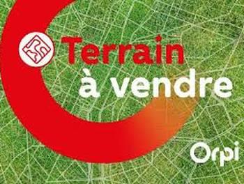 Terrain 1000 m2