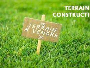 terrain à Saint-Gervais-la-Forêt (41)