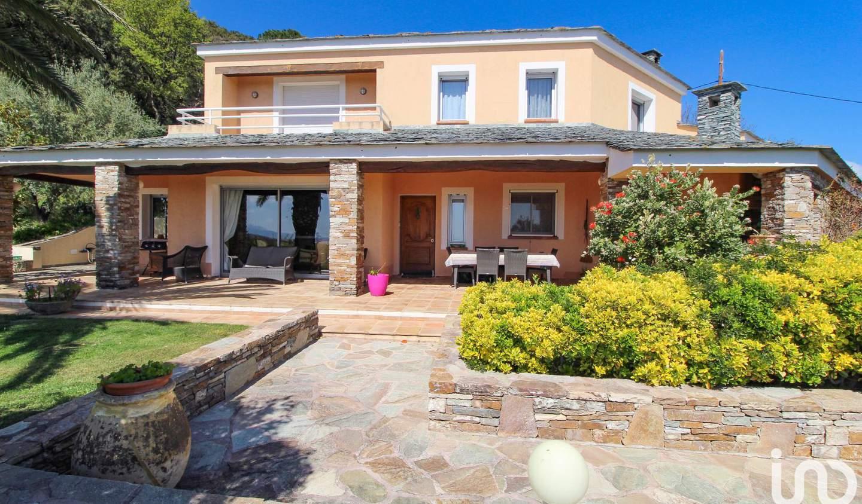 Maison avec piscine et terrasse Furiani