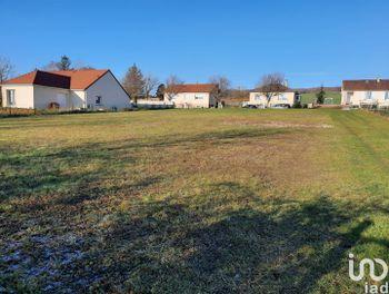 terrain à Thorigny-sur-Oreuse (89)