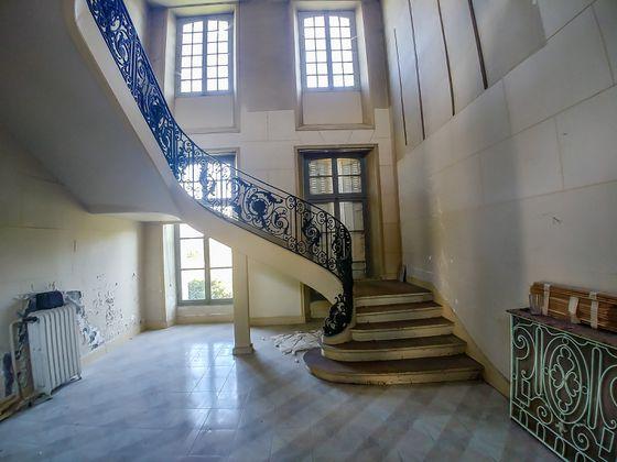 Vente château 50000 m2