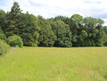 terrain à Saint-Priest-Taurion (87)