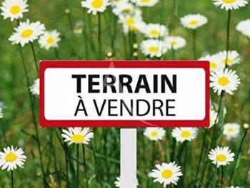Terrain 11361 m2