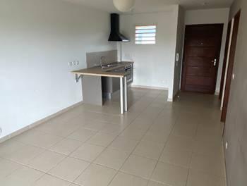 Appartement 2 pièces 41,5 m2