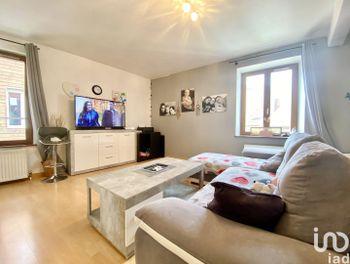 appartement à Sarrebourg (57)