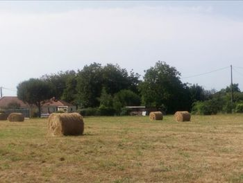 terrain à Sarpourenx (64)