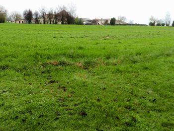 terrain à Boutenac-Touvent (17)