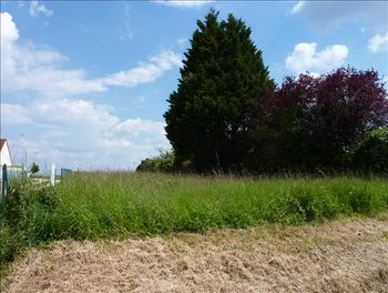 terrain à Montrichard (41)