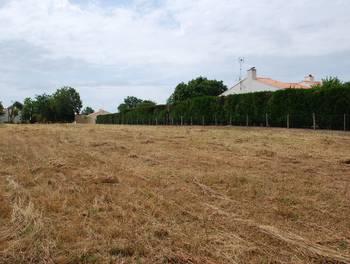 Terrain 1749 m2