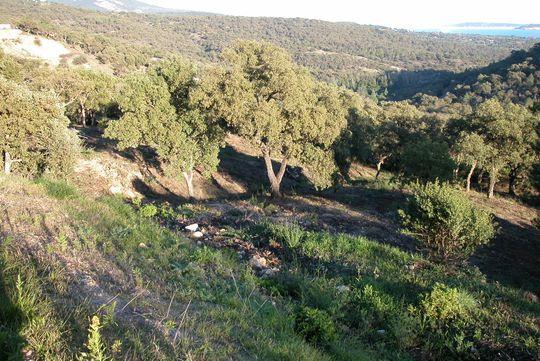 Ground  with panoramic view