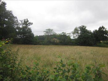 terrain à Nantheuil (24)