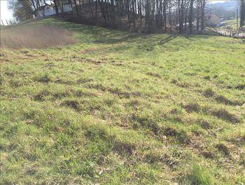 terrain à Voutezac (19)