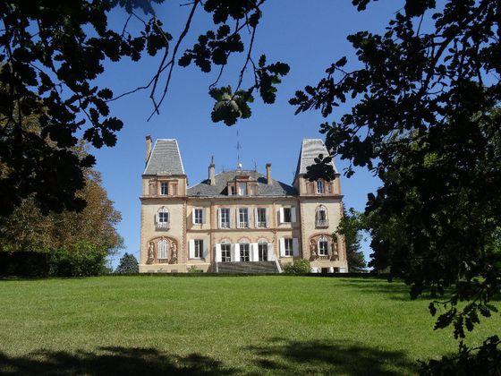 vente Château 28 pièces 1000 m2 Toulouse