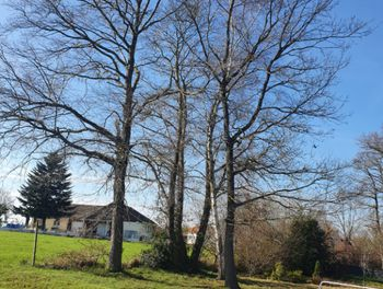 terrain à Luquet (65)