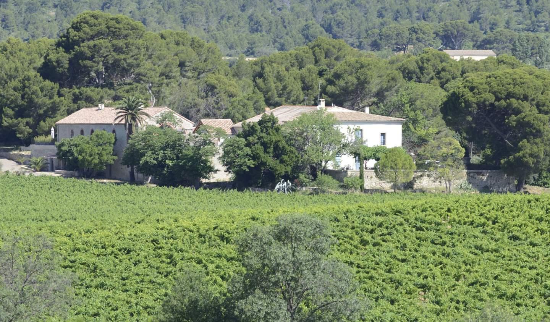 House Villeveyrac