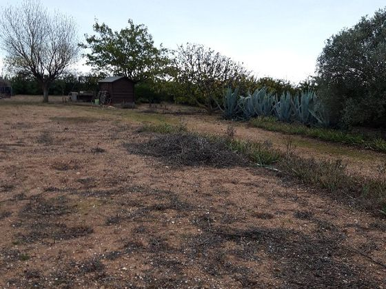 Vente terrain 2728 m2