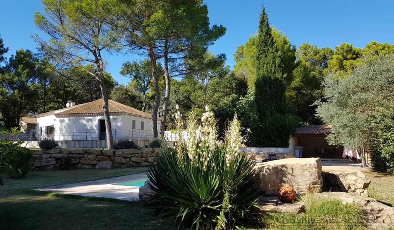 Villa avec piscine et terrasse Orange
