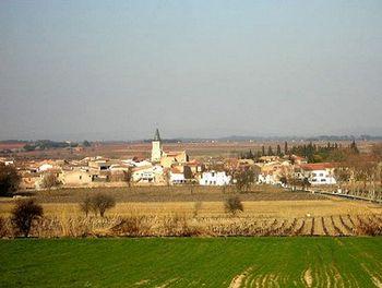 terrain à Pinet (34)