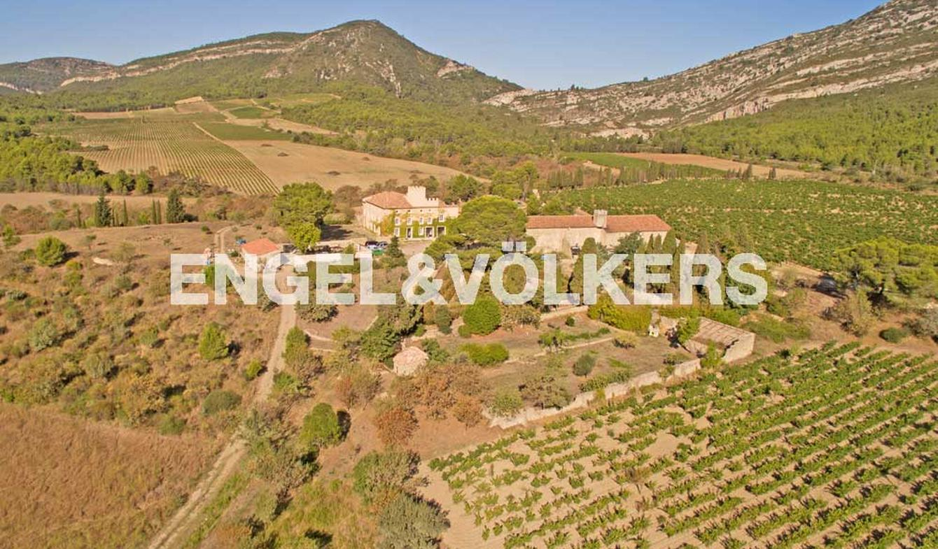Propriété viticole Aude