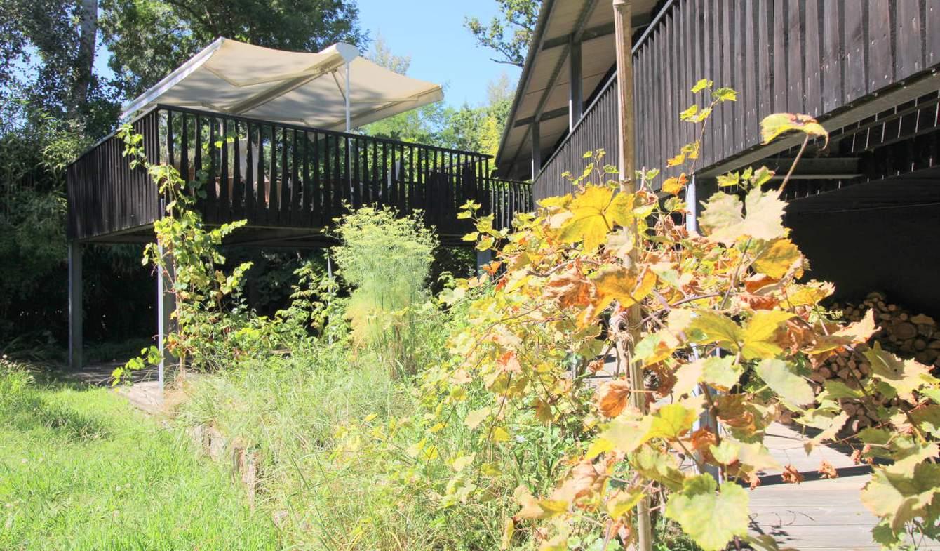 Maison avec terrasse Lege-cap-ferret