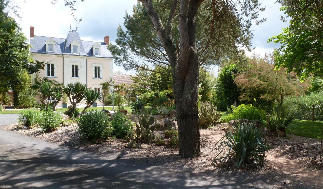 Maison avec terrasse Saint-Sauveur