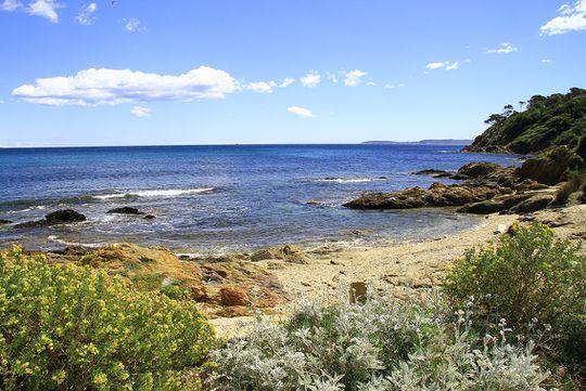 Seaside property and garden