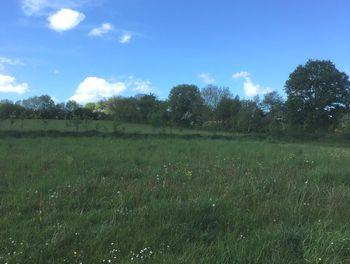 terrain à Saint-Pierre-de-Semilly (50)