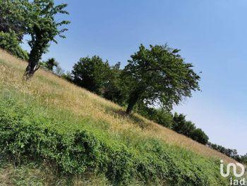terrain à La Roche-Vineuse (71)