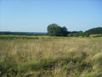 terrain à Saint-Romain (16)